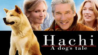 Netflix box art for Hachi: A Dog's Tale