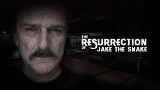 Netflix Box Art for Resurrection of Jake the Snake, The
